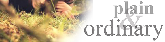 Plain and Ordinary title banner