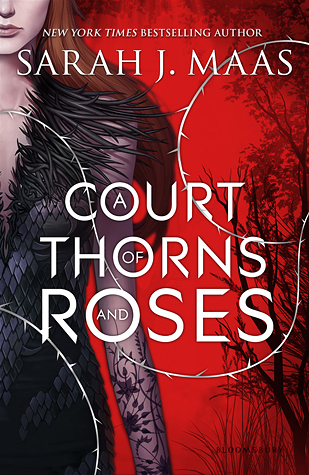 A Court of Thorns and Roses Book Review Pic 01 by Casey Carlisle