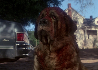 cujo-film-vs-novel-pic-03-by-casey-carlisle