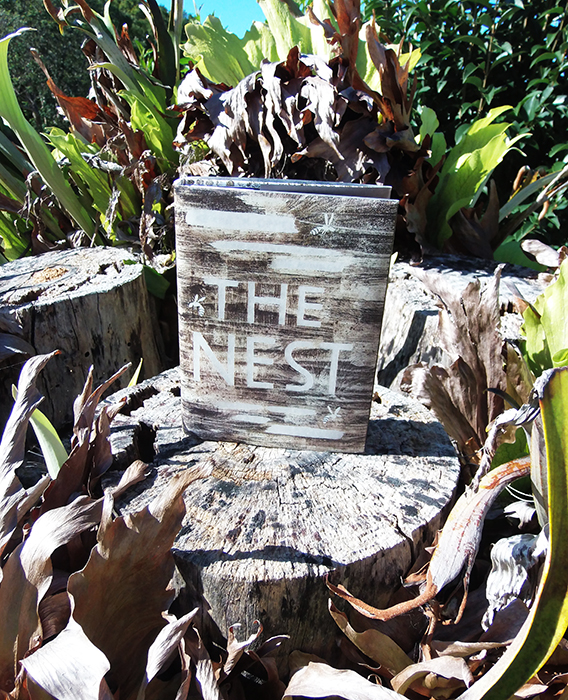 #bookporn The Nest by Casey Carlisle.jpg
