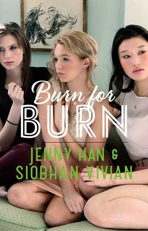 Burn for Burn Book Review Pic 01 by Casey Carlisle