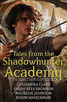 Slay that Series Tales From The Shadowhunter Academy by Casey Carlisle