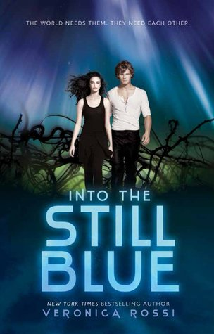 Into The Still Blue Book Review Pic 01 by Casey Carlisle