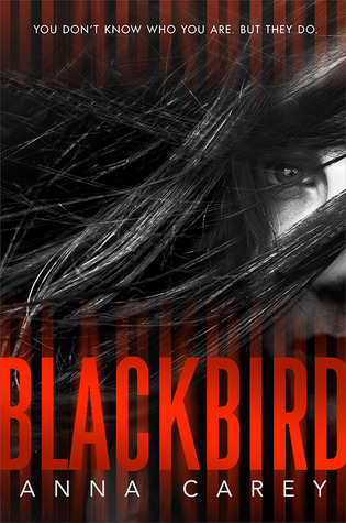 Blackbird (#1 Blackbird) Book Review Pic 01 by Casey Carlisle.jpg