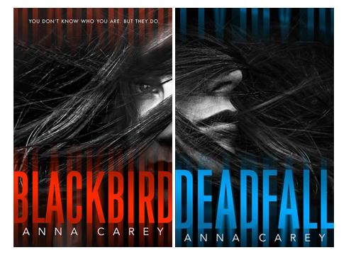 Blackbird Duology Wrap Up Pic 01 by Casey Carlisle.jpg