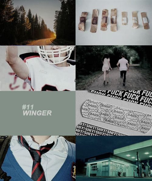 Winger (#1 Winger) Book Review Pic 02 by Casey Carlisle